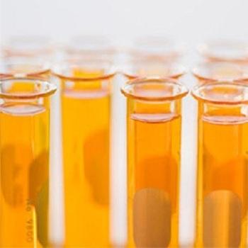PROTEIN HYDROLYSATE LIQUID 40% (Casein)