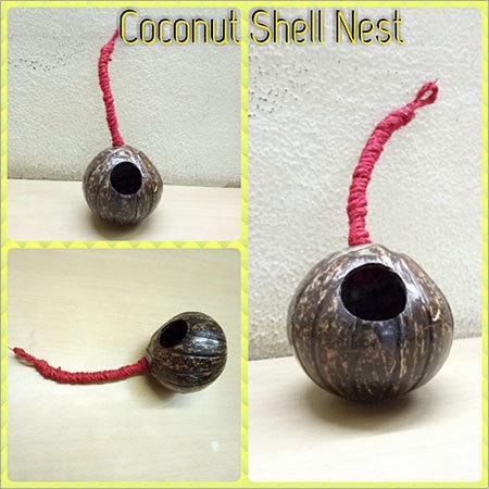Coconut Shell Nest