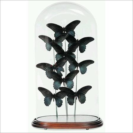Bell Butterflies Jars