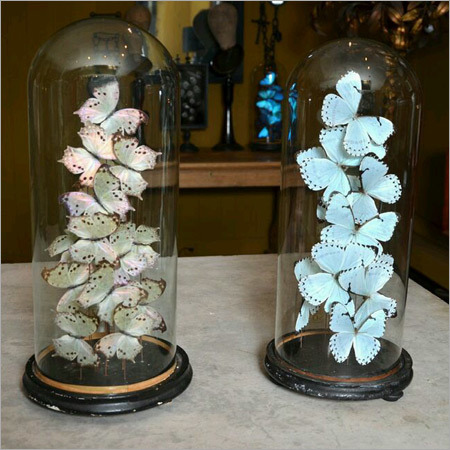 Butterfly Bell Jar With Table Top