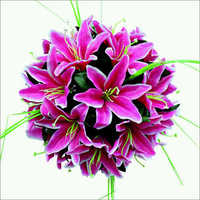 Pink Decorative Flower