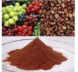 Priyangu Seeds De (10:1) Extract