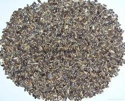 Milk Thistle (80%) (Sylimarin) Extract