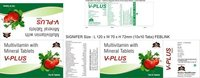 V PLUS Multivitamin Tablet