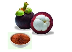 Mangosteen Extract 10%
