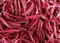 Dry Red Chilli Teja (With / Without Stem)