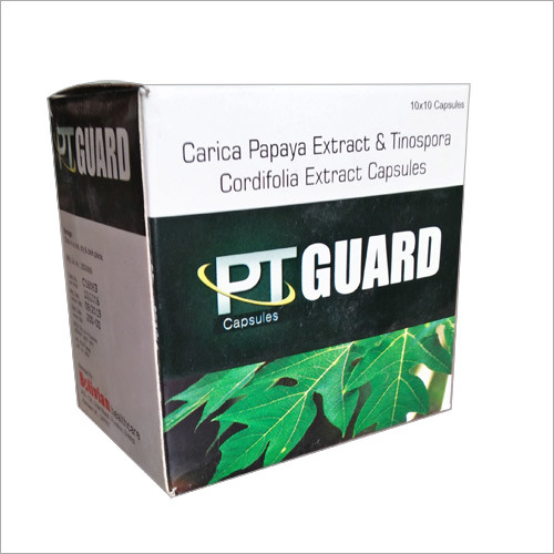 PT Guard