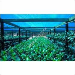 Agriculture Nursery Shade Nets