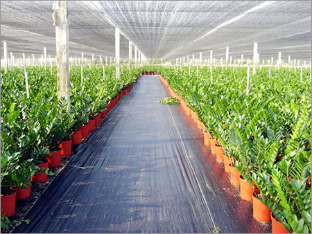 Agriculture Green House Shade Nets