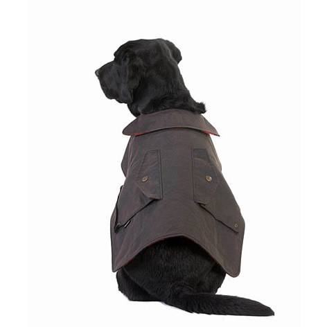 Skin Oil Dog Coat