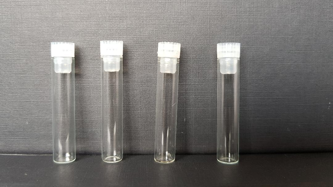 Glass Shell Vials