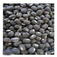 Black gram