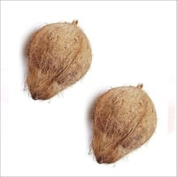 Husked Coconut India