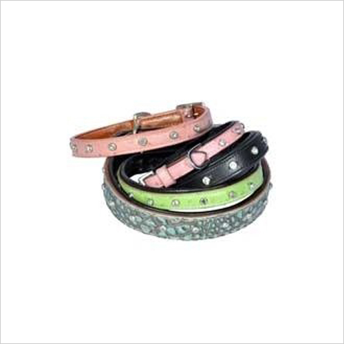 Dog Designer Collar