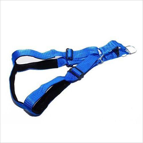 Dog Padded Body Belt
