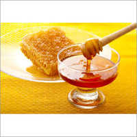 Forest Honey