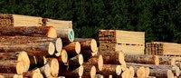 Round Pine Wood