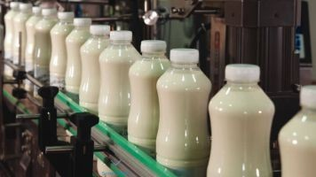 Dairy Product Consultant