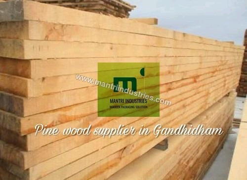 Pine wood supplier in gandhidham