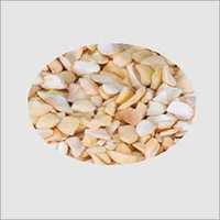 SP Cashew