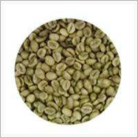 R1 - SCR 16 - WP Coffee Bean