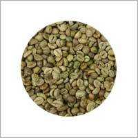 R1 - SCR 16 - Cleaned Coffee Bean