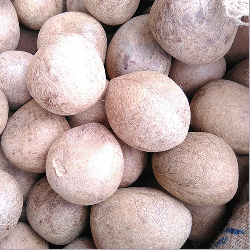 Coconut Copra, Coconut Copra Manufacturers & Suppliers, Dealers