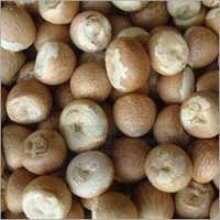 Jam Areca Nut