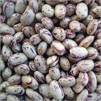 Organic Red Kidney Beans (Rajma )