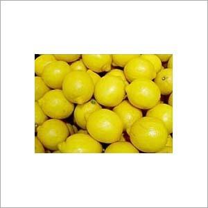 Lemon fruit extract