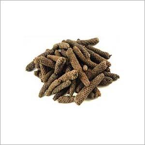 Pippali Extract