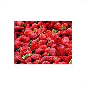 Strawberry Extract