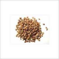 Gokshur Extract