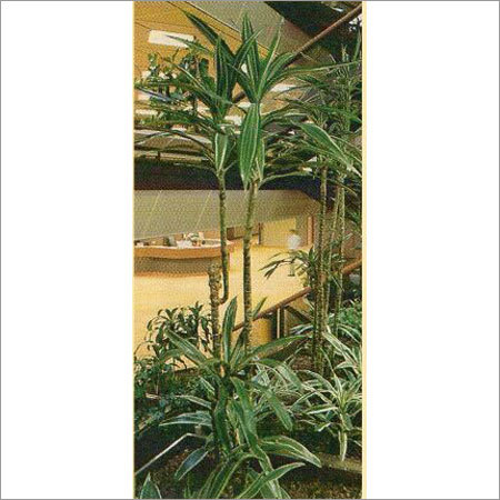 Paper Made Ornamental Plant