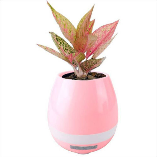 Flower Pot Wireless Bluetooth Speaker