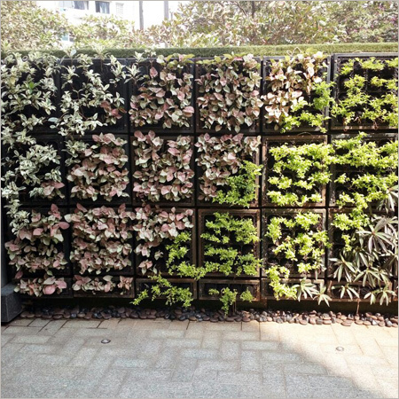 Green Wall Landscaping