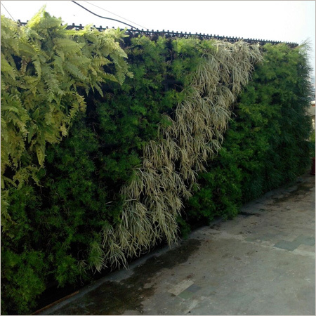 Green Wall Landscaping Work