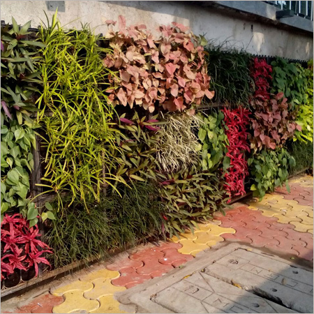 Green Wall Landscaping Services