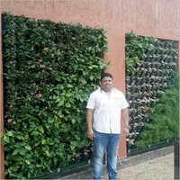 Biowall Terrace Services