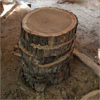 Babool Wooden