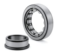 Cylindrical Roller Bearing NJ 317