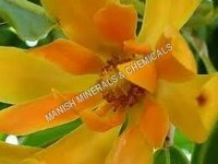 Bright Summer Flowers Water Soluble Fragrance