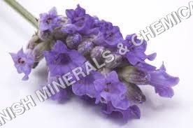 Water Soluble Fragrances