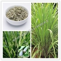 Lemon Grass Water Soluble Fragrance
