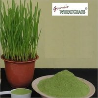 Wheatgrass Powder Bulk