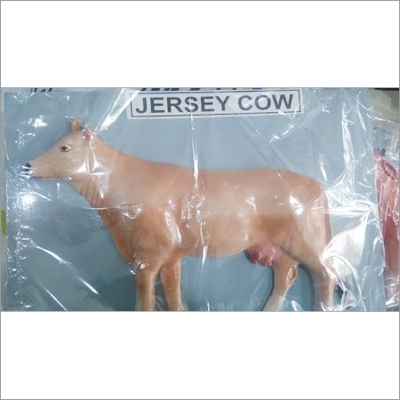 Jersey Cow Model