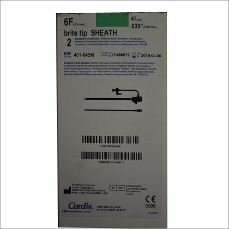 Long Sheath Catheter