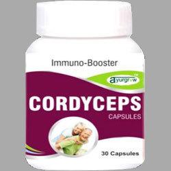 Cordyceps Capsule