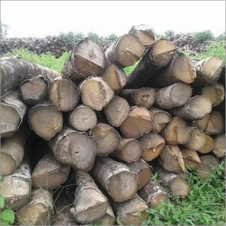 Gamari Wood