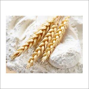 Whole Wheat Flour